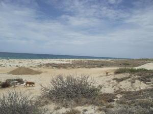 Playa Colorado Bluff Dr, Playa Colorado Bluff Lot, East Cape,