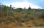 Predio El Zalate, Costa Azul Q-2, San Jose del Cabo,