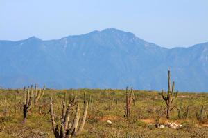 No Name, Camino Las Playitas View Lot, Pacific,