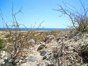 Avenida Zorro, Montecito View Lot #4, East Cape,
