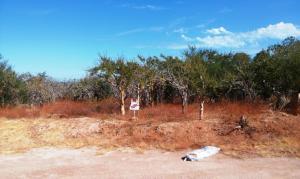 Mision Buena Vista, EL CAMINO REAL LOT#9, East Cape,