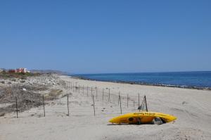 Camino arroyo San Bartolo, Tres Palmas Hotel Site, East Cape,
