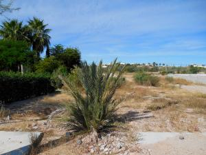 0430 Calle 12 Lote Ali   property for sale