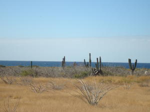 1 P3/3, Lot G Pescadero Investment Lot, Pacific,