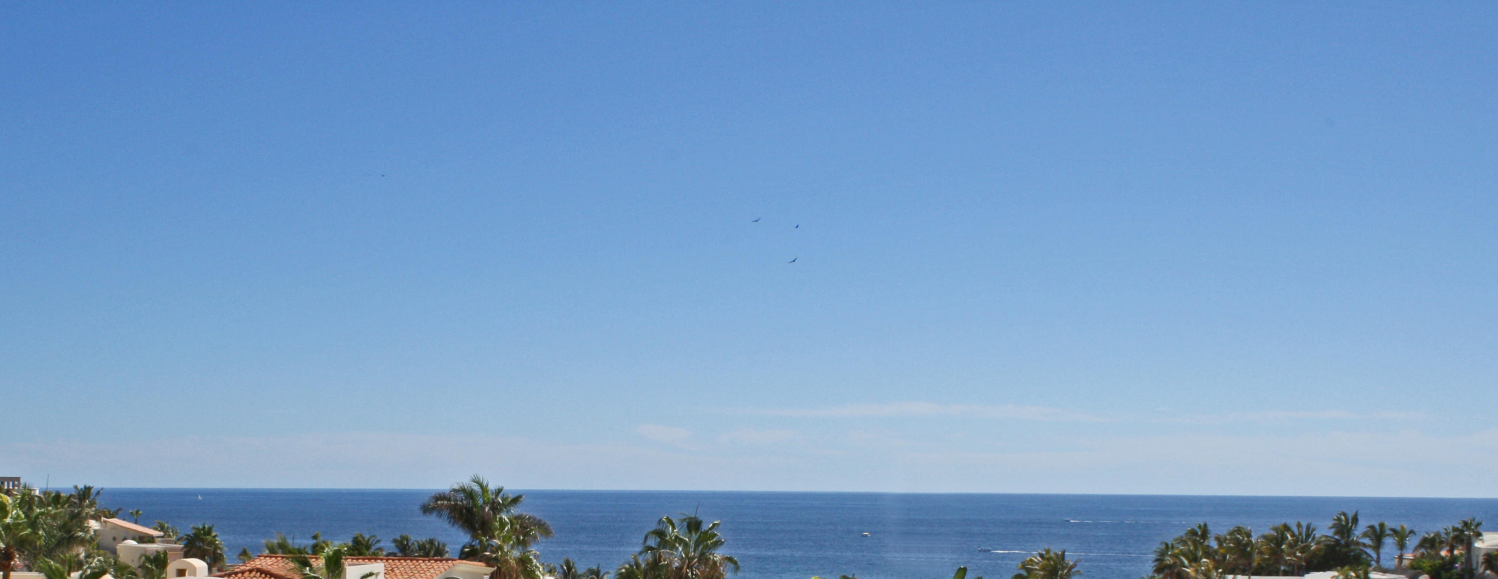 Cabo San Lucas, ,Land,For Sale,Pedregal de Cabo San Lucas,16-672