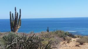 Bay of Dreams, Bay of Dreams Lot #32, La Paz,