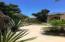Calle 5 de Mayo, Casa Natura, San Jose del Cabo,