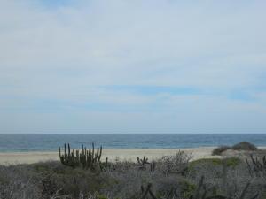 Fabulous Ocean View lot 369, Pescadero, Pacific,