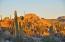 East Cape, Rancho Buena Vista 1, East Cape,