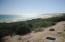 B4 Pez Gallo, Kellerman Salado, East Cape,