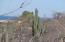 Phase 2 S/N, Vista De Las Brisas Lot #19, East Cape,