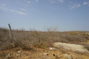 13754  Parcela 591 Z1 Todos Santos Land   - Lot