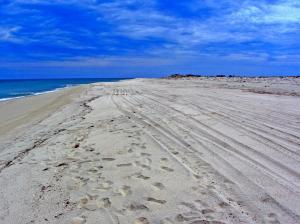 Beachfront Lot