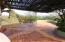 Palapa Mariposa Starburst
