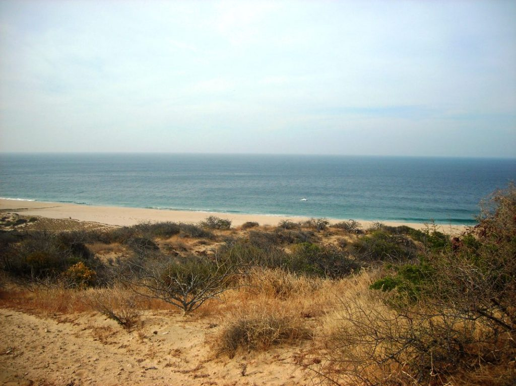 Pacific, ,Land,For Sale,Frac. Cascabel,17-75
