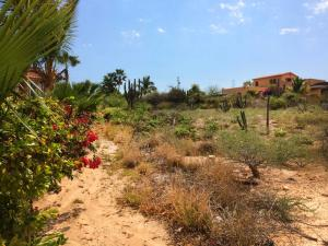 Calle sin Nombre Excellent Residential Lot   property for sale