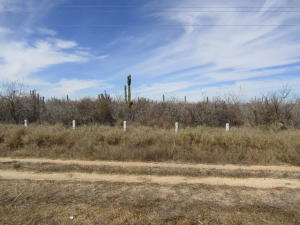 Carr. # 19 Carr. La Paz-Todos Santos Lote Carrizal 5   property for sale