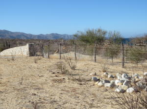 Completely fenced lot. Easy to build