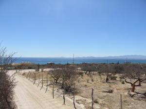 Main Road, El Sargento 4 Lot Parcel,