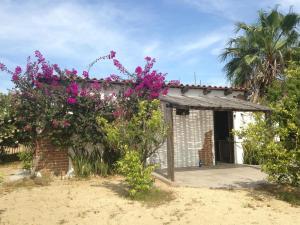 16738  Sin Calle Charming Bodega en la Huerta   - Home