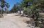 Circuito La Choya, Casa Carpenteros, San Jose del Cabo,