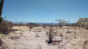 Isla Guadalupe, Salvador Lot., La Paz,