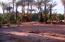 S/N S/N, Ejido San Ignacio Lot 5, Mulege,