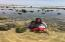 low tide tidepools