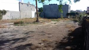 LOTE 5 ABASOLO COMERCIAL  RESIDENCIAL LOT MZA.208