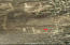 Calle sin nombre, Terreno Buenavista, East Cape,