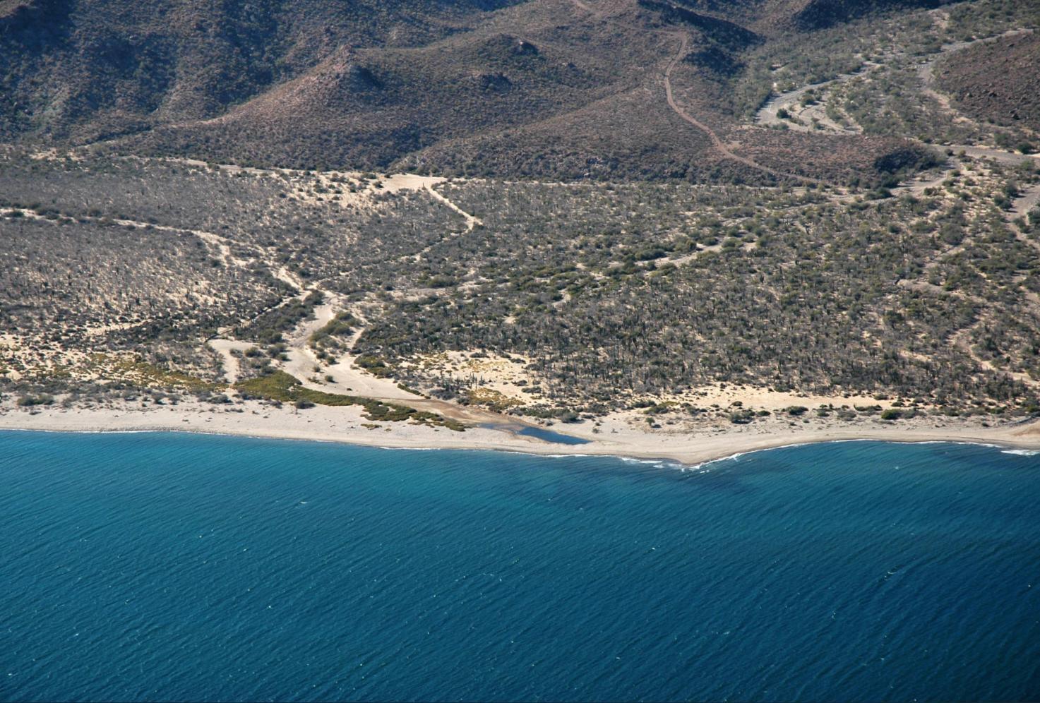 Oceanfront Ranch-13