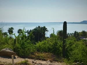 Buenavista View Lots #4