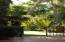 Yoga, green area.