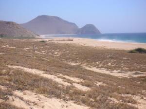 161 Sin Nombre, Beachfront Lot 161 Todos Santo, Pacific,