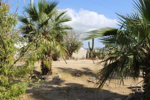 carretera transpeninsular, Terreno Brisas, Cabo San Lucas,