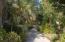 lush, oasis setting