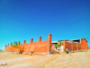 Damiana, Casa Damiana, Pacific,