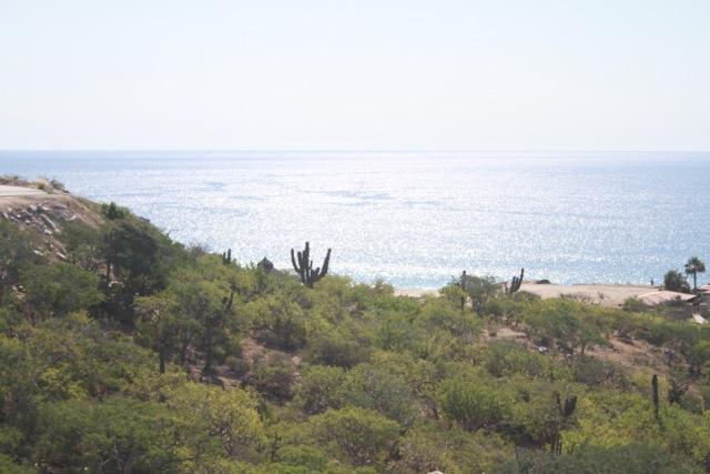 San Jose del Cabo, ,Land,For Sale,Retorno Padre Kino C,18-77