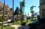 Km 0.5 Camino a San José, Villa La Estancia, Cabo San Lucas,