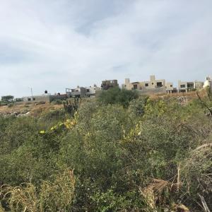 Calle Playa El Tuyle, HOJAZEN LAND, Cabo San Lucas,