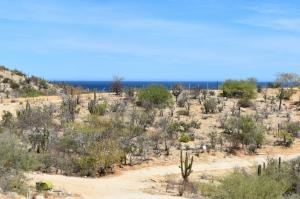 Vista Las Brisas, Lot#23 - Richardson, East Cape,