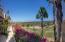 Paseo Finisterra, Casa Kathy, San Jose del Cabo,
