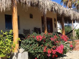 Buena Vista, Casa Leo y Christina, East Cape,