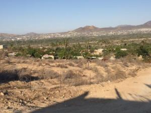 Las Animas Bajas near Flora´s, Lote 19, San Jose del Cabo,