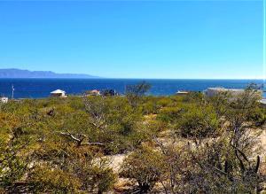 East Ocean View
