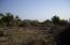 sin nombre, Lote Damaris, East Cape,