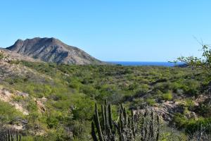 Camino Frailes-Cabo Pulmo, RANCHO SAN JUAN, East Cape,
