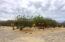 Colina del Sol, Casa Cedros, East Cape,