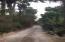 s/n Camino a la playa la Cachora, Ranchette at La Cachora Valley, Pacific,