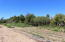 Food Forest * Investment Opp, Food Forest * Investment Opp, East Cape,